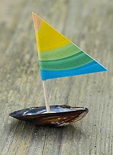 Segelbåtar av blåmusselskal